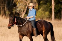 """Ultimate Horsemanship Experience – 4 week Immersion at """"Alchemy Place"""" –  March 2-27"""