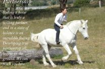 Immerse yourself – 3 & 6 week Modules – Realize the Magic of Horses & Realize the Magic of Yourself !!!!
