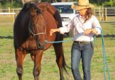 Mt Mee QLD – 4 Courses – Groundskills & Riding – May 1-11