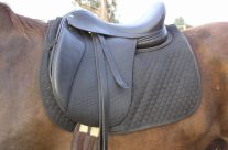 Pre-Loved & discounted BALANCE saddles