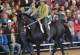 Wilton (via Sydney) – August 3-5 -Riding with Synchronicity Course