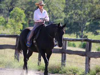 View Video – Mel Fleming Horsemanship